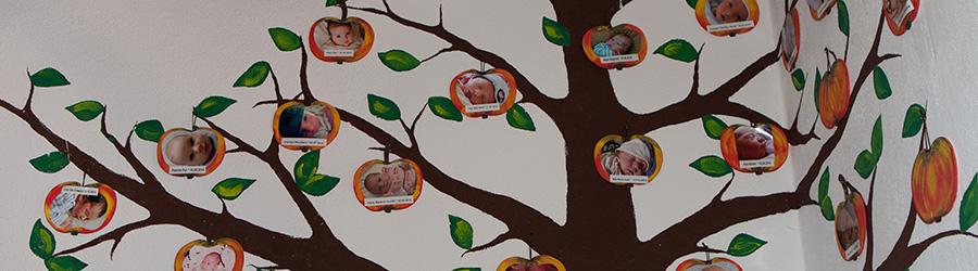 Geburtsbericht - Familie Mohr